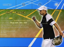 Andy Roddick Titles Info